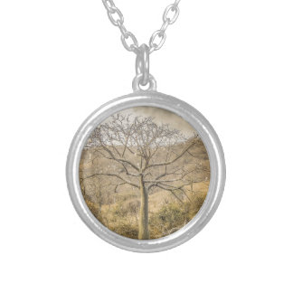 Ceiba Tree at Forest Guayas Ecuador Silver Plated Necklace