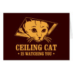 Ceiling Cat is Watching You Greeting Card
