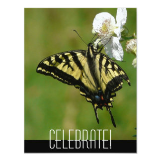 Celebrate! Any Occasion Butterfly Invitation