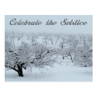 Celebrate the Solstice Winter Scene Cards Postcard