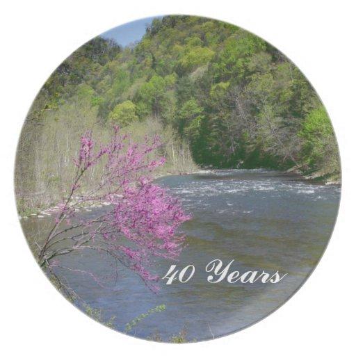 Celebrating 40 years Plate