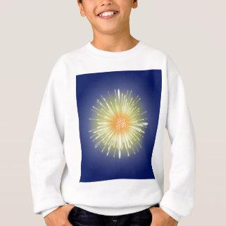 Celebration Firework Sweatshirt