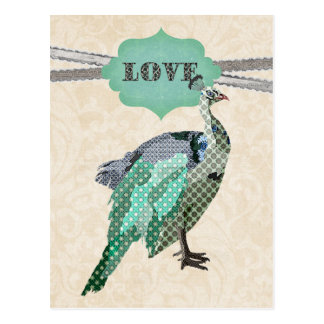 Celeste Peacock Love   Postcard