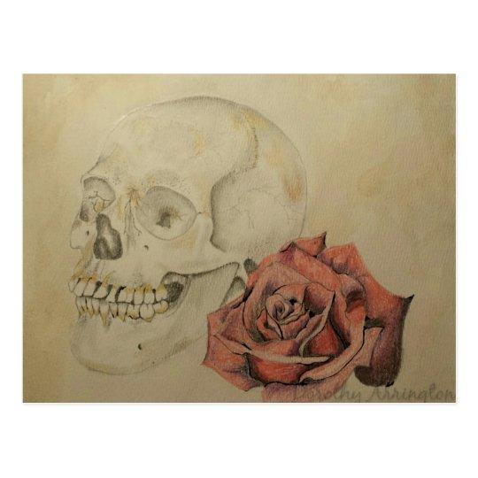Celia's Rose Postcard
