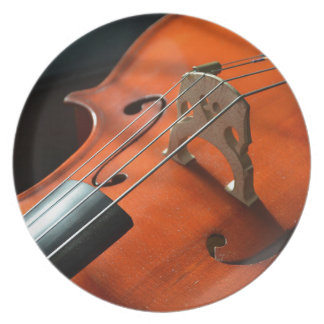 Cello Strings Stringed Instrument Wood Instrument Plate