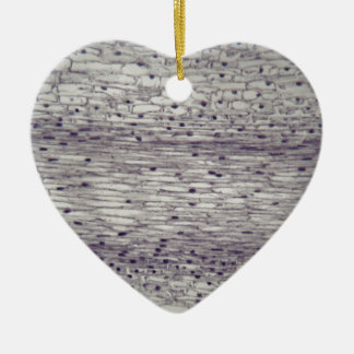 Cells of a root under the microscope. ceramic heart ornament