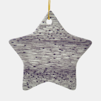 Cells of a root under the microscope. ceramic star ornament