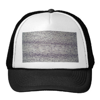 Cells of a root under the microscope. trucker hat