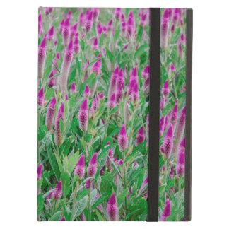 Celosia Flower Field Case For iPad Air