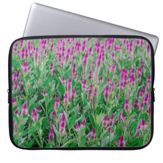 Celosia Flower Field Laptop Sleeve