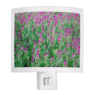 Celosia Flower Field Nite Light
