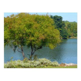 Centennial Lake in Ellicott City Maryland Postcard