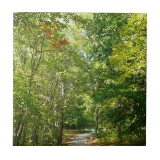 Centennial Wooded Path I Ellicott City Nature Tile