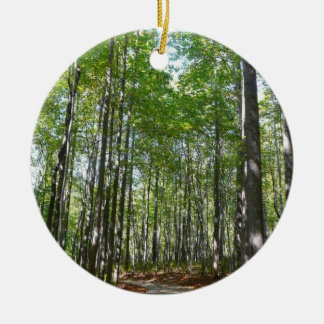 Centennial Wooded Path II Ellicott City Maryland Ceramic Ornament