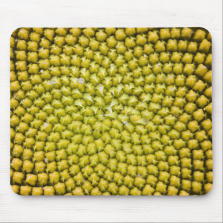 Center of giant Sunflower (Helianthus annuus) Mouse Pad