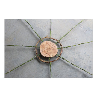 Centered Eco Art Sculpture of Wood Bamboo & Vine Photo Print