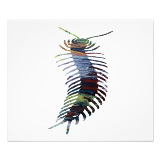 Centipede Art Photo Print