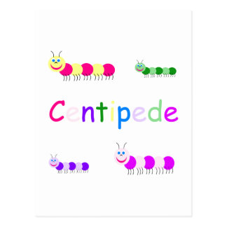 centipede postcard