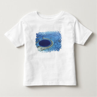 CENTRAL AMERICA, Belize, Large coral reefs off Toddler T-shirt