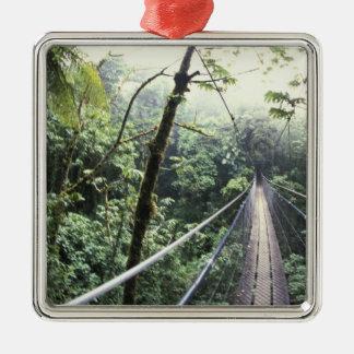 Central America, Costa Rica, Monteverde Cloud Metal Ornament