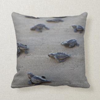 Central America, El Salvador, Pacific Ocean Throw Pillow