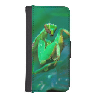 Central America, Panama, Barro Colorado Island. iPhone SE/5/5s Wallet Case