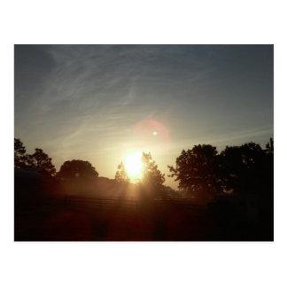 Central Florida Sunrise II Postcard
