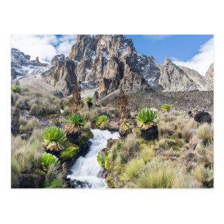 Central Mount Kenya National Park Postcard
