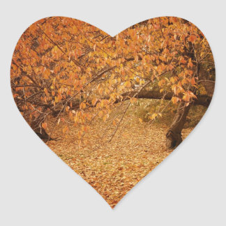 Central Park Autumn - New York City Heart Sticker