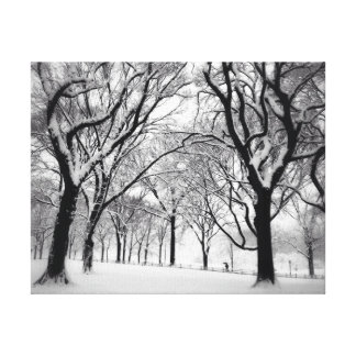 Central Park Blanketed In White Canvas Print