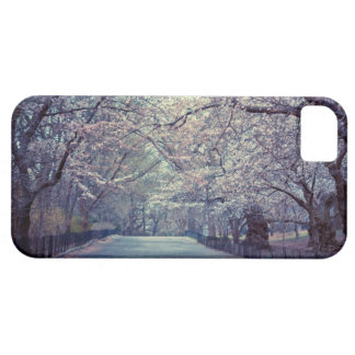Central Park Cherry Blossom Path iPhone 5 Covers