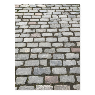 Central Park Cobblestones Stone Pathway NYC Photo Postcard