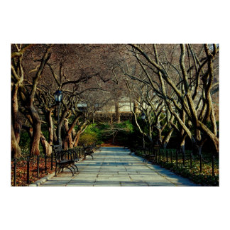 Central Park Conservatory Landscape Photo Poster