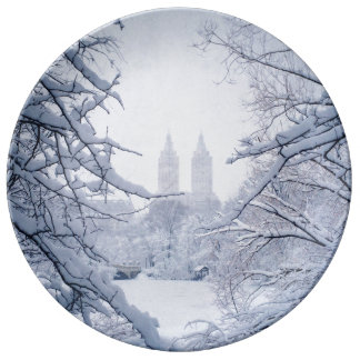 Central Park Framed In Snow and Ice Porcelain Plates
