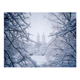 Central Park Framed In Snow and Ice Postcard