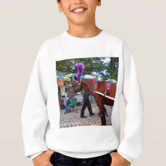 Central Park Horse Sweatshirt