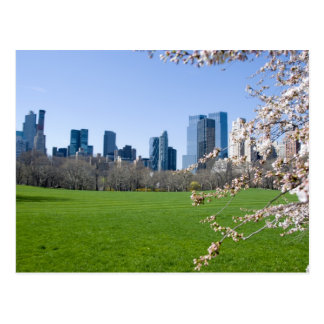 Central Park in Spring - NYC Postcard