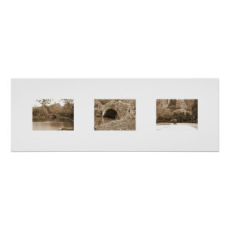 Central Park In Three Views Poster