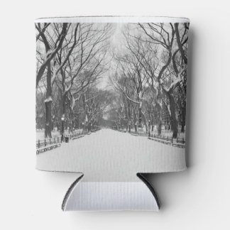 Central Park in Winter - Can Cooler