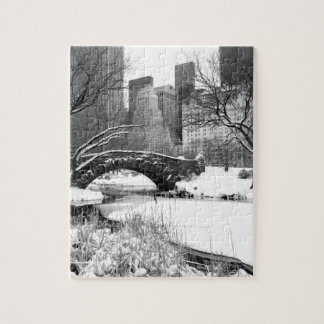 Central Park in Winter Jigsaw Puzzle