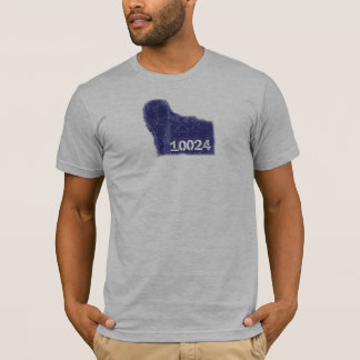 Central Park Lamp Post in 10024 zipcode T-Shirt