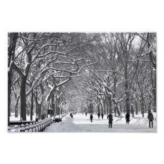 Central Park Mall Winter Scene Photo