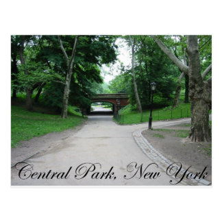 Central Park, New York 2 Postcard