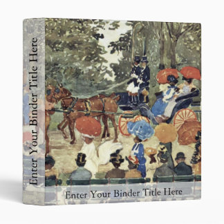 Central Park New York By Prendergast Maurice Brazi Vinyl Binders