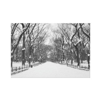 Central Park New York City in Winter Canvas Print