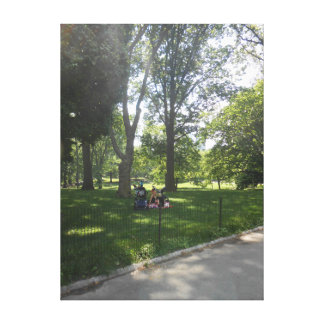 Central Park, New York City, USA Canvas Print