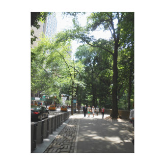Central Park, New York City, USA Canvas Print