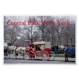 Central Park / New York Poster