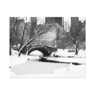 Central Park NYC in Winter (B&W) Canvas Print
