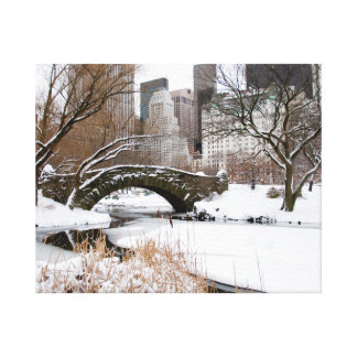Central Park NYC in Winter Canvas Print